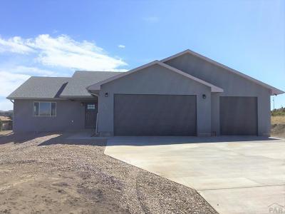 Colorado City Single Family Home For Sale: 4174 Cuerno Verde Blvd