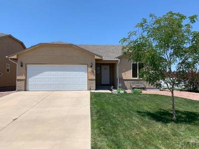 Pueblo Single Family Home For Sale: 4313 Ruger Ct.