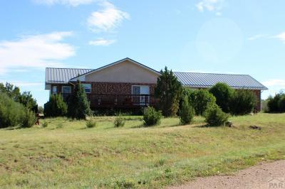 Colorado City Single Family Home For Sale: 4050 W Graneros Rd