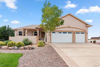 Pueblo West Single Family Home For Sale: 2108 W Woodstock Dr