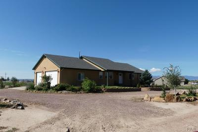Pueblo West Single Family Home For Sale: 206 S Reynosa Dr