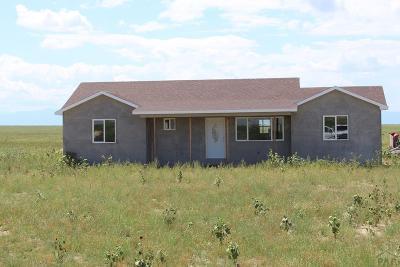Pueblo Single Family Home For Sale: 3301 SE 36th Lane