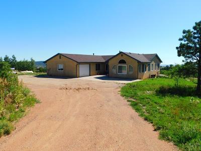 Rye Single Family Home For Sale: 10714 Bartlett Trail Rd
