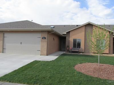 Pueblo Single Family Home For Sale: 1920 Lynda Lane