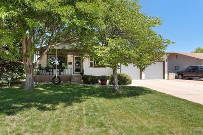 Sunset Park Single Family Home For Sale: 77 Baylor St
