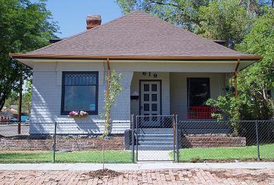 Pueblo Single Family Home For Sale: 619 W 11th St