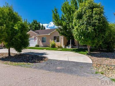Pueblo West Single Family Home For Sale: 459 W Player Dr
