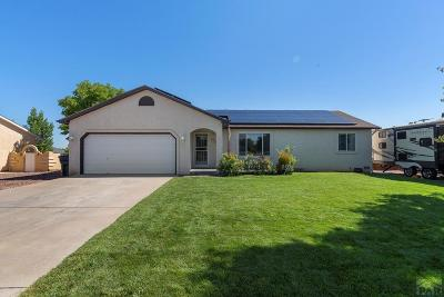 Pueblo West Single Family Home For Sale: 113 E Bond Dr