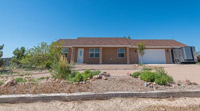 Pueblo West Single Family Home For Sale: 438 E Gentry