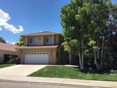 Pueblo Single Family Home For Sale: 1017 Cedarcrest Dr