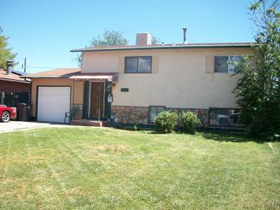 Pueblo Single Family Home For Sale: 3024 Aster St