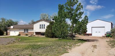 Pueblo West Single Family Home For Sale: 923 S Capistrano Lane