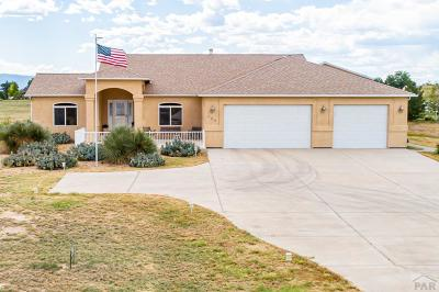 Pueblo West Single Family Home For Sale: 403 S Hacienda Del Sol Dr
