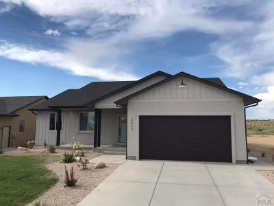 Pueblo Single Family Home For Sale: 2317 Cliffmoor Ln