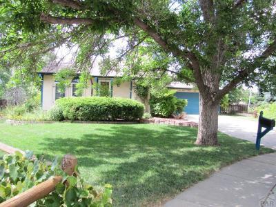 Colorado City Single Family Home For Sale: 1194 Cenotaph Circle