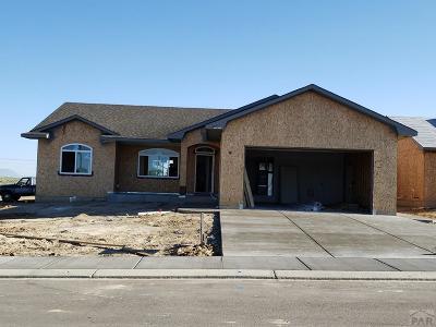 Pueblo Single Family Home For Sale: 2313 Cliffmoor Ln