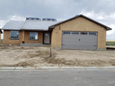 Pueblo Single Family Home For Sale: 2311 Cliffmoor Ln
