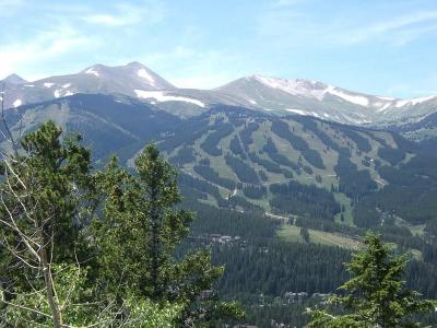 Breckenridge Residential Lots & Land For Sale: 1025 Gold Run Gulch Road