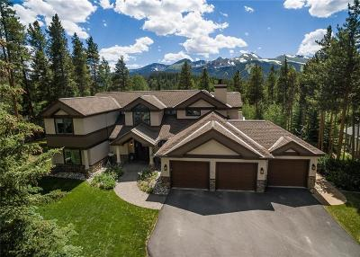 Breckenridge Single Family Home For Sale: 1035 Boreas Pass Road