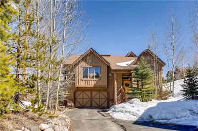 Silverthorne CO Single Family Home For Sale: $810,000