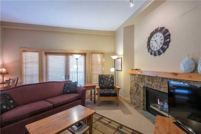 Copper Mountain Condo For Sale: 910 Copper Road #120