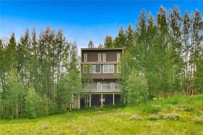Silverthorne Single Family Home For Sale: 66 Royal Red Bird Drive