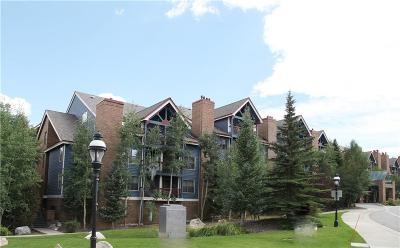 Blue River, Breckenridge Condo For Sale: 100 S Park Avenue #310