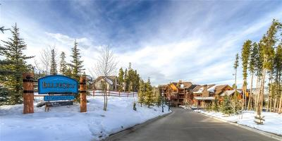 Breckenridge Condo For Sale: 42 Snowflake Drive #601