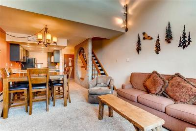 Breckenridge Condo For Sale: 601 Village Road #13010