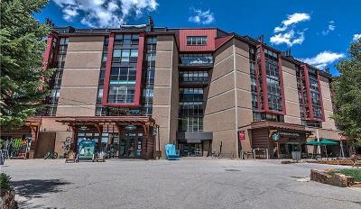 Copper Mountain Condo For Sale: 209 Ten Mile Circle #310