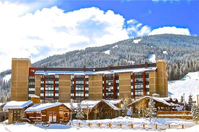 Copper Mountain Condo For Sale: 209 Ten Mile Circle #510