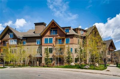 Breckenridge Condo For Sale: 600 Columbine Road #5308