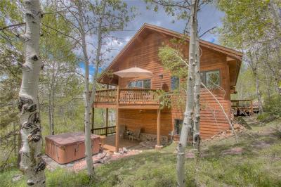 Silverthorne Single Family Home For Sale: 25 Eagle Wings Trail