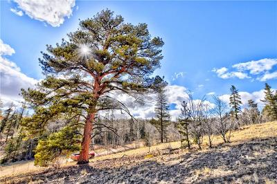 Como Residential Lots & Land For Sale: 61 Idaho Court