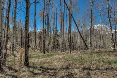 Silverthorne Residential Lots & Land For Sale: 63 Mayfly Drive