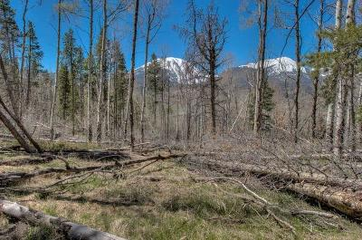 Silverthorne Residential Lots & Land For Sale: 35 Mayfly Drive