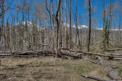 Silverthorne Residential Lots & Land For Sale: 176 Angler Mountain Ranch Road