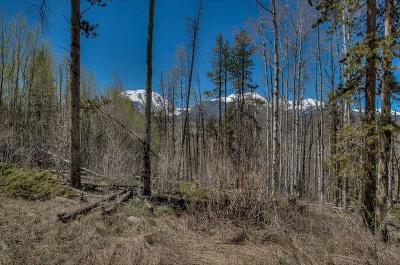 Silverthorne Residential Lots & Land For Sale: 194 Angler Mountain Ranch Road