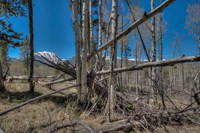 Silverthorne Residential Lots & Land For Sale: 161 Angler Mountain Ranch Road