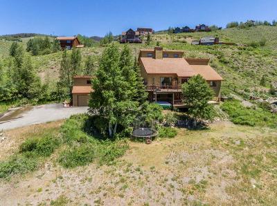 Silverthorne Single Family Home For Sale: 536 Hamilton Creek Road