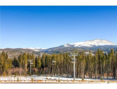 Breckenridge Condo For Sale: 1891 Ski Hill Road #7110