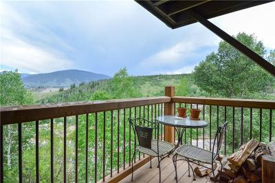 Dillon, Silverthorne, Summit Cove Condo For Sale: 2417 Ryan Gulch Court #2417