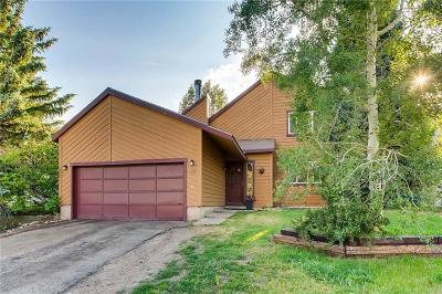 Silverthorne Single Family Home For Sale: 1609 N Badger Lane