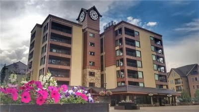 Blue River, Breckenridge Condo For Sale: 645 S Park Avenue #402