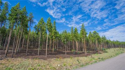 Breckenridge Residential Lots & Land For Sale: 663 Discovery Hill Drive
