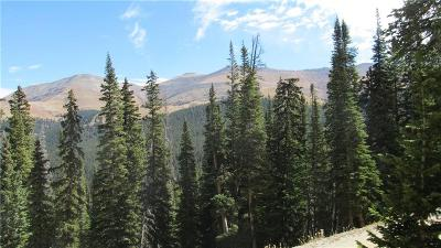 Breckenridge Residential Lots & Land For Sale: 105 Quandary View Drive