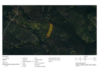Fairplay, Alma, Como, Jefferson Residential Lots & Land For Sale: S Salt Creek