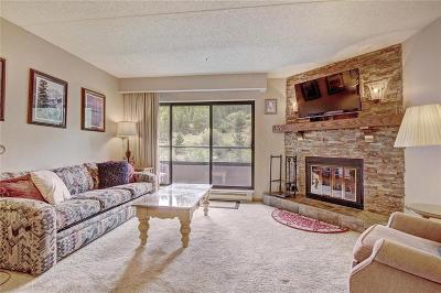 Blue River, Breckenridge Condo For Sale: 640 Village Road #4308