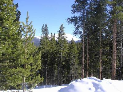 Breckenridge Residential Lots & Land For Sale: 52 Glory Hole Drive