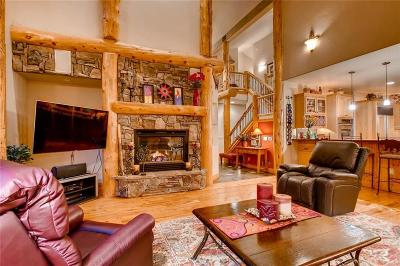 Summit County Single Family Home For Sale: 110 Silverbell Court